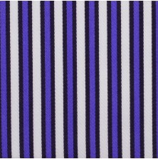 Navy Regello Stripe
