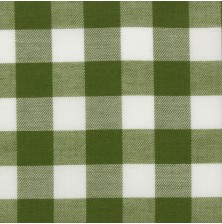 Olive Twill Gingham