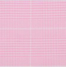 Pink Causto Plaid